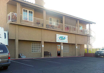 established kennel minutes from the vegas strip kennels With dog boarding las vegas strip