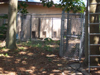 Outside View of Kennel Runs - Click to Enlarge, close window when done