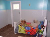 Doggy Bedroom - Click to Enlarge, close window when done