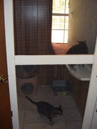 Cat Condo - Click to Enlarge, close window when done