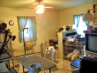Dog Room - Click to Enlarge, close window when done