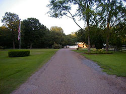 Kennel Driveway - Click to Enlarge, close window when done