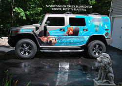 Wrapped Hummer - Click to Enlarge, close window when done