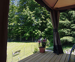 Yard from Gazebo - Click to Enlarge, close window when done