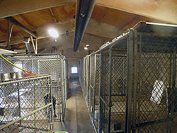 Kennel - Click to Enlarge, close window when done