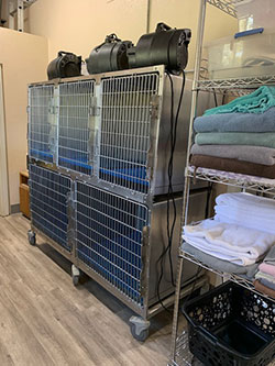 Groom Drying Cages