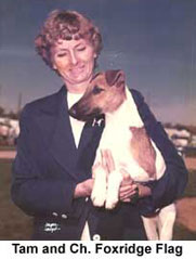 Tam Cordingley and Ch. Fox Terrier Foxridge Flag
